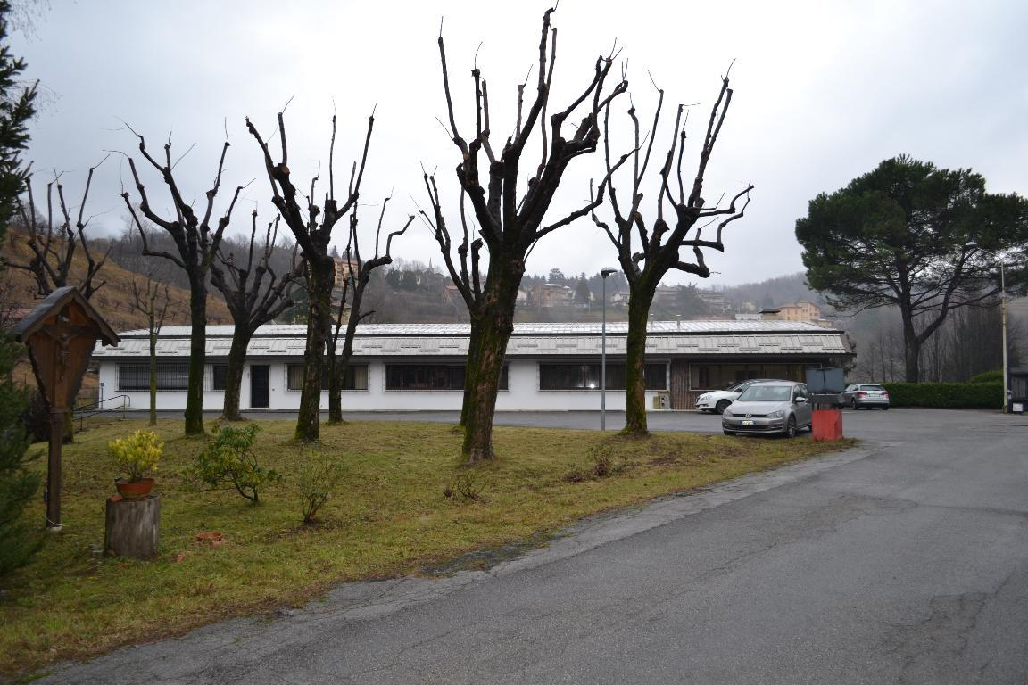 Vendita capannone Caprino Bergamasco superficie 13787m2