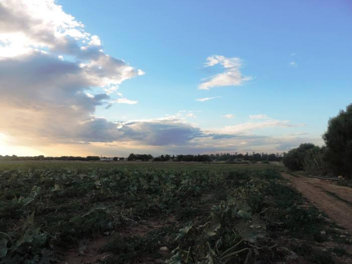 Terreno Agricolo in vendita a Santa Croce Camerina, 9999 locali, zona Località: C. DA IMPERATORE, prezzo € 420.000   CambioCasa.it