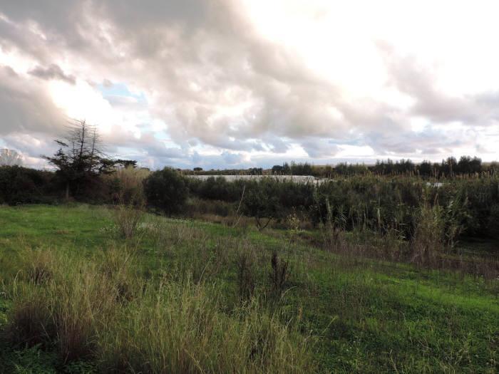 Terreno Agricolo in vendita a Santa Croce Camerina, 1 locali, zona Località: C. da Piraino, prezzo € 90.000   CambioCasa.it
