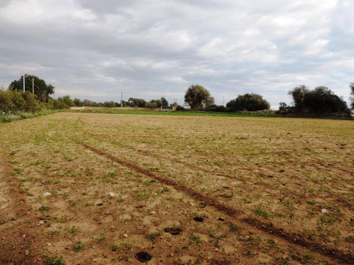 Terreno Agricolo in vendita a Santa Croce Camerina, 9999 locali, zona Località: CASUZZE, prezzo € 70.000   CambioCasa.it