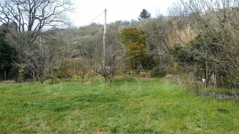 Alassio, terreno di circa 6.000 mq. con progetto  per costruire una villa.