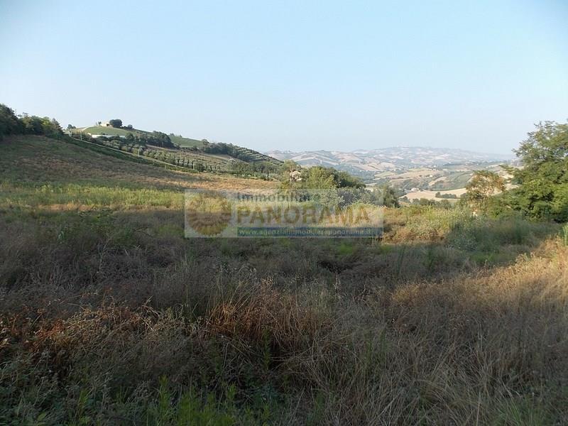 Rif. LC1634 Casale in vendita a Castignano con terreno
